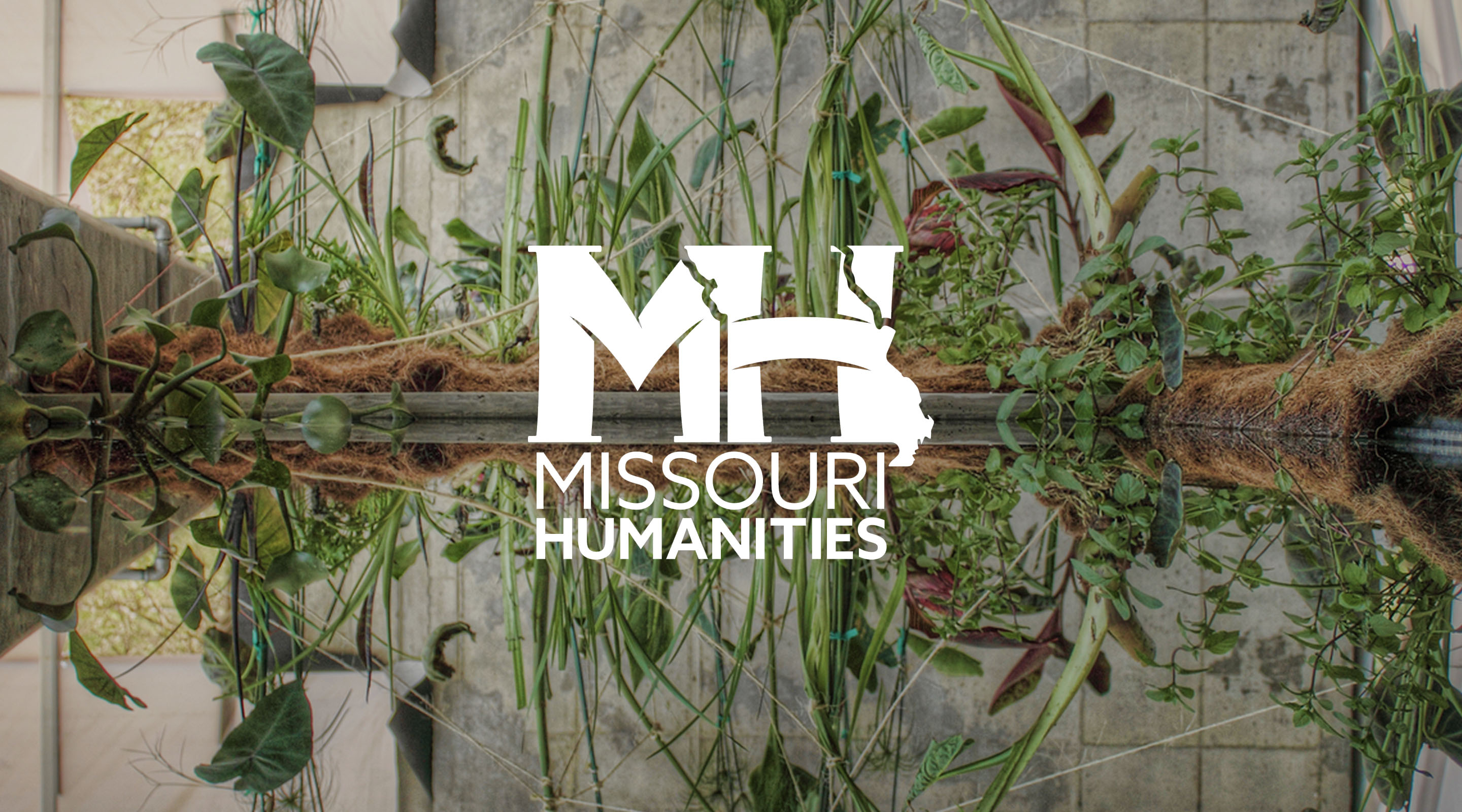 Laura Lesniewski participates in the Missouri Humanities Symposium: Water